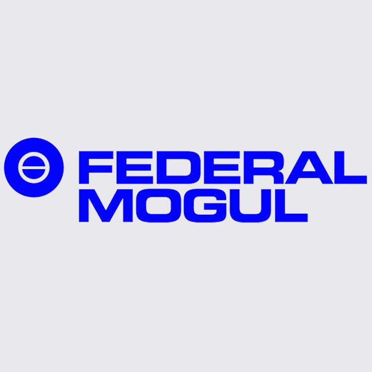 Federal mogul - dự án Tín Đạt JSC